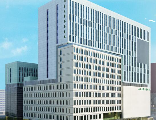 山東大學齊魯醫院