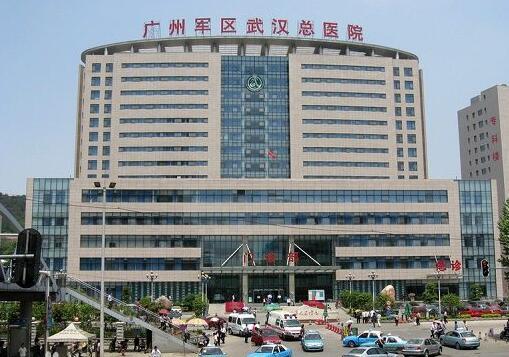 廣州軍區武漢總醫院