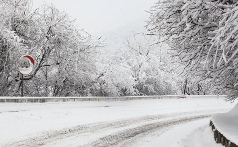 雪灾 苏格兰 欧洲之星 英国 气温 机场