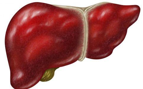 男人保肝 养生保健 性功能