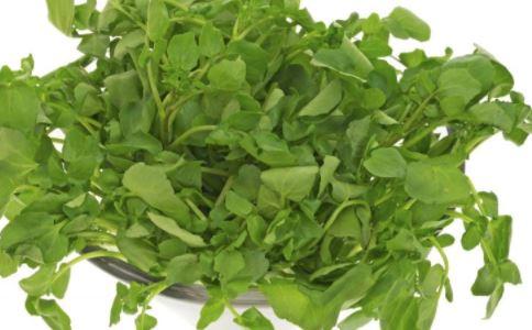 什么是豆瓣菜,豆瓣菜的营养价值