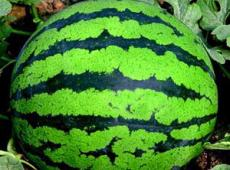 患口腔溃疡可以吃西瓜吗