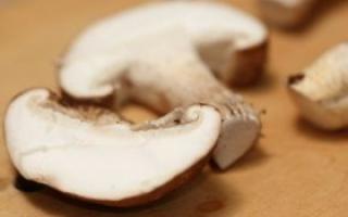 常吃蘑菇有什么好处_居家与养生_中医_99健康网