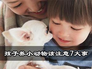 宝宝养小动物注意事项 孩子养动物 孩子饲养小动物