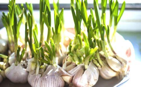 吃大蒜的注意 哪些人不能吃大蒜 大蒜