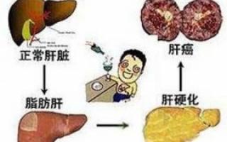 吃银杏好吗_注意了!不吃早餐易伤肝脏_健康快讯_新闻_99健康网
