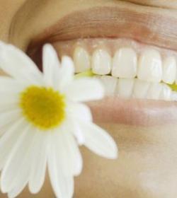 洗牙 洗牙有助防治牙周病