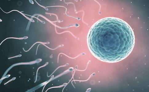 男人的精子 男人的精液 精液的功效