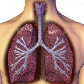 哪些原因会引起肺癌