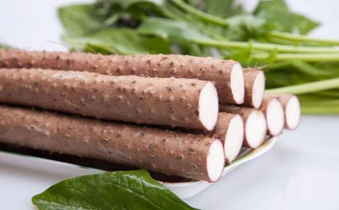 补肾的食物 吃什么补肾 男人吃什么补肾