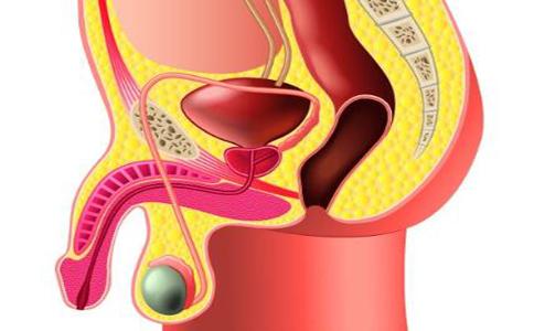 睾丸固定手术的术前术后该怎么做 睾丸固定术前准备工作有哪些 睾丸固定术后怎么护理