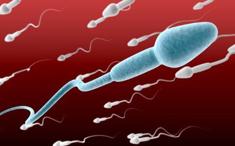 男女胎儿b超发育全过程高清图 4
