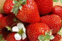 夏季祛湿养心吃7大食物