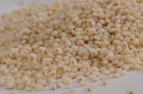 抗癌食谱:红糖高粱米粥