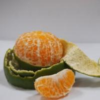 秋季抗癌水果——橘子