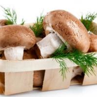 防癌抗癌果蔬——蘑菇