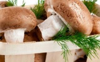 有哪些菇类能防癌你知道吗_抗癌果蔬_肿瘤科_99健康网