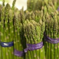 防癌抗癌蔬菜——芦笋