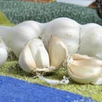 防癌抗癌食物——大蒜
