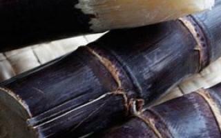 冬季吃甘蔗要注意哪些饮食禁忌_饮食误区_饮食_99健康网