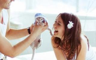宝宝性格内向 父母如何应对_行为教养_育儿_99健康网