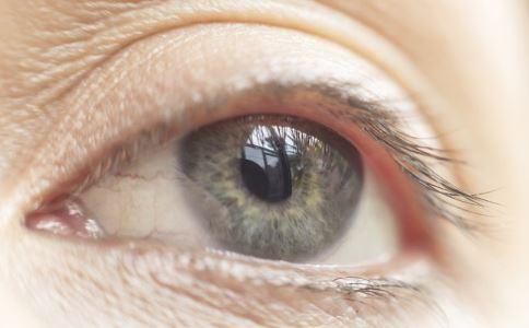 眼睑是哪个部位 眼睑是哪里图解 眼睑是哪