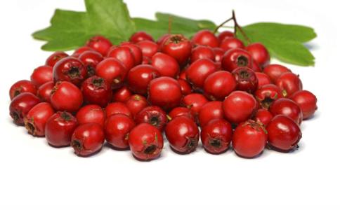 食疗 可以 精神 白糖 谷胱甘 避免 西红柿 体质 清水 气血