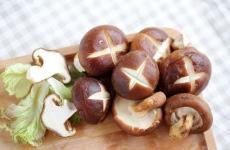 有益卵巢保养的12种平民食物