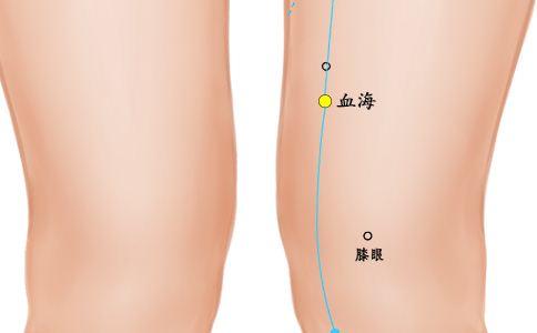 血海穴位的准确位置图 血海穴位的位置图 血海的准确位置图