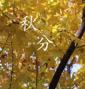 24节气秋分如何养生 秋分养生吃什么 秋分养生的注意