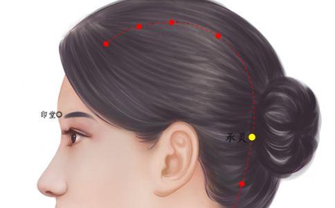 位置图 空穴/脑空穴位的准确位置图