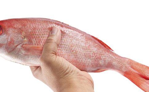 麻鱼骨 麻鱼骨的功效 麻鱼骨的作用