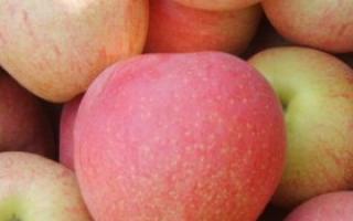 这些水果干营养价值高_水果_饮食_99健康网