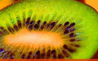 水果也分公母 教你如何挑选好吃_水果_饮食_99健康网