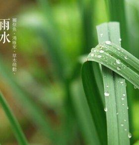 雨水如何养生 雨水养生吃什么 雨水养生的注意事项