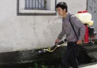 专家辟谣:广东登革热疫情非长期化学灭蚊所致