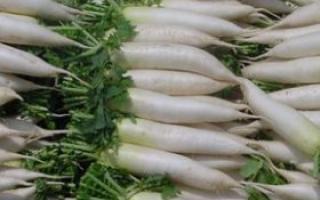 冬天食用白萝卜的价值_食物百科_饮食_99健康网