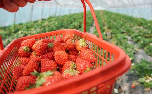 冬季吃哪种水果最养肾_业界动态_肾病_99健康网