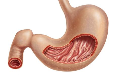 怎么让胃暖起来 冬天老犯胃病怎么办 老胃病怎么养