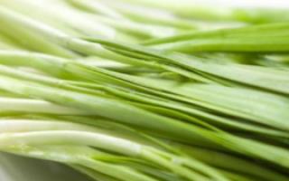常吃清热祛湿食物预防湿疹复发_皮肤病饮食_皮肤科_99健康网