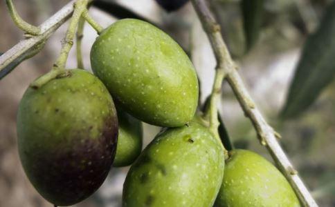 低热量的果蔬有哪些 哪些果蔬是低热量的 低热量的减肥果蔬是什么