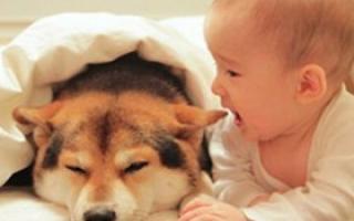 宝宝溢奶和吐奶不是一回事 5种情况看医生_喂养常识_育儿_99健康网