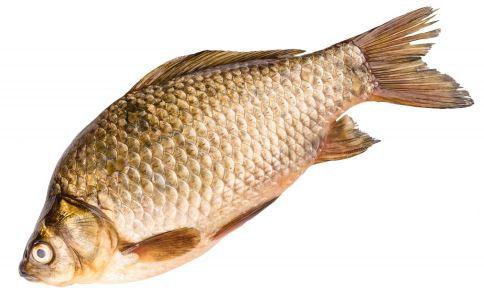 孕妇可以吃鲫鱼吗 产妇可以吃鲫鱼吗 鲫鱼的营养价值