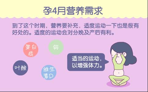 适合孕4月准妈妈的营养食物 怀孕4个月妊娠贫血的危害 孕4月营养需求