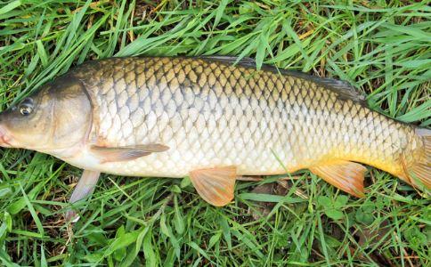 孕妇可以吃青鱼吗 产妇可以吃青鱼吗 青鱼的营养价值
