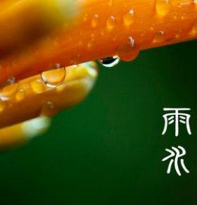 雨水节气养生 雨水 节气 雨水节气如何养生