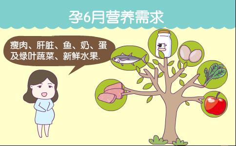 孕6月营养需求 怀孕6个月如何摄入营养 怀孕6个月应该吃哪些食物