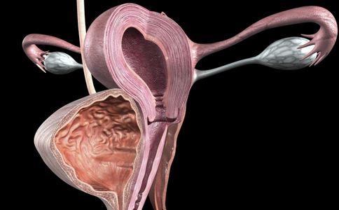 怀孕4周症状 怀孕4周胎儿图 怀孕4周注意事项