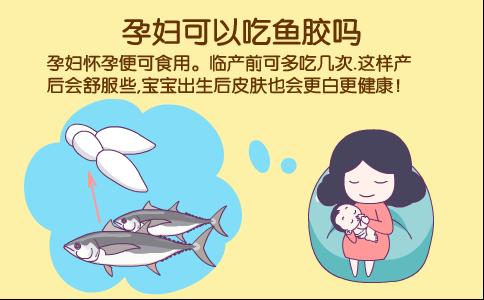 孕妇吃鱼胶 孕妇可以吃鱼胶吗 孕妇吃鱼胶有什么好处