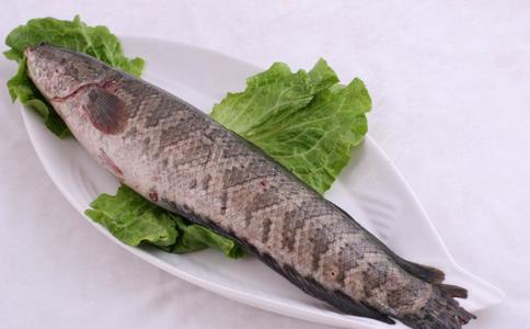 孕妇吃黑鱼 孕妇能吃黑鱼吗 孕妇吃黑鱼有什么好处